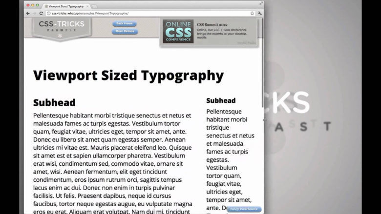 Folosire viewport font size