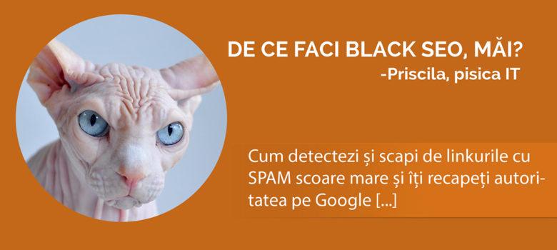 cum detectezi black seo si scapi de linkuri spam